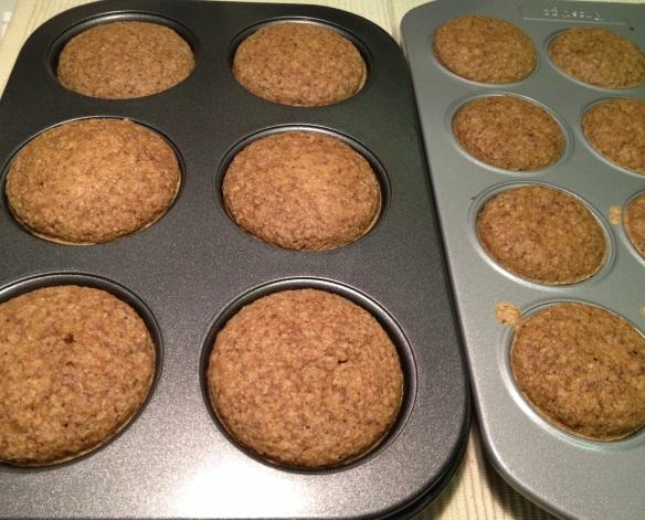 Oat Bran Muffin 1