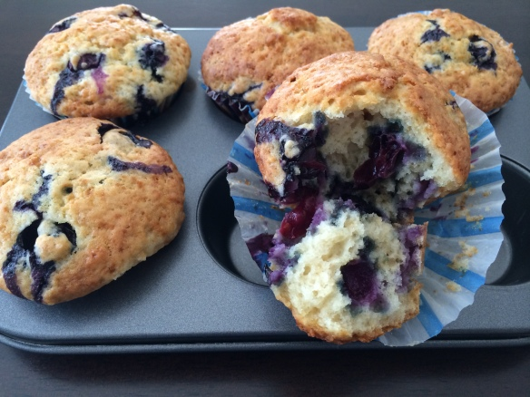 Blueberry Muffin 1